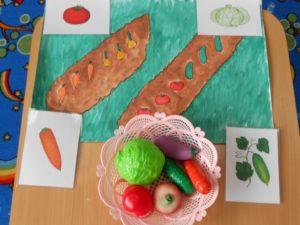 Конспект интегрированного занятия Овощи и фрукты (старшая группа)