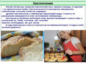 Исследовательская работа Почему в хлебе столько дырочек?