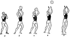 Передача мяча двумя руками сверху и снизу в волейболе