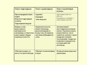 Конспект по биологии на тему Сравнительная характеристика строения, жизненных циклов, гидроидных и сцифоидных медуз. 7 класс