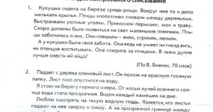 Контрольные диктанты, списывания по русскому языку для 4 класса