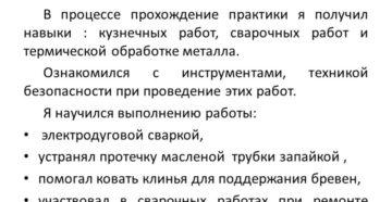 ОТЧЕТ О ПРОХОЖДЕНИИ ПРОИЗВОДСТВЕННОЙ ПРАКТИКИ по профессии Парикмахер