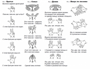 Примерные упражнения для проведения пальчиковой гимнастики в 1 классе