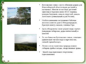 Исследовательский проект: Разнообразие природы НСО