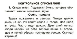 Контрольное списывание по русскому языку. 1 класс.