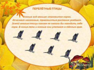 План на неделю на тему Перелётные птицы в старшей группе