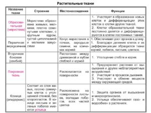 Сравнительная таблица по биологии Ткани растений
