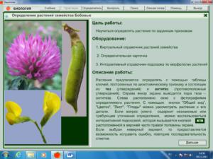 Практические работы по биологии 7 класс