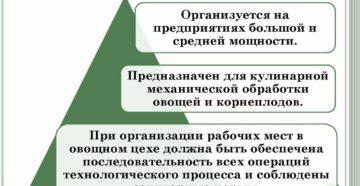 Организация работы овощного цеха
