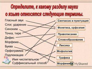 Конспект урока по русскому языку на тему Фонетика. Графика. Орфоэпия 10 класс