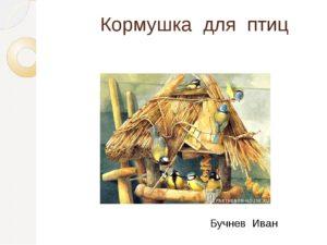 Творческий проект Бучнева Ивана /8 класс/ Кормушка для птиц
