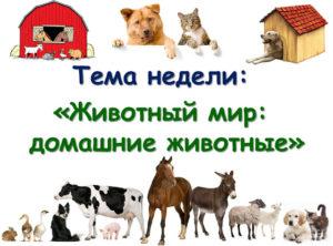 Планирование тематической недели Домашние животные Младшая группа 3-4 года