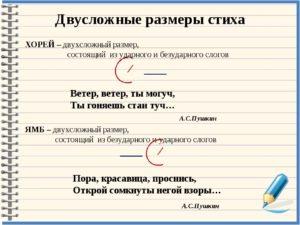 6-6 класс стихотворные размеры - двусложные