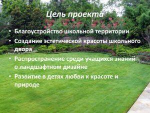 Социальный проект по озеленению школьной территории